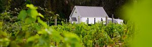 The Hunter Wine Region New South Wales