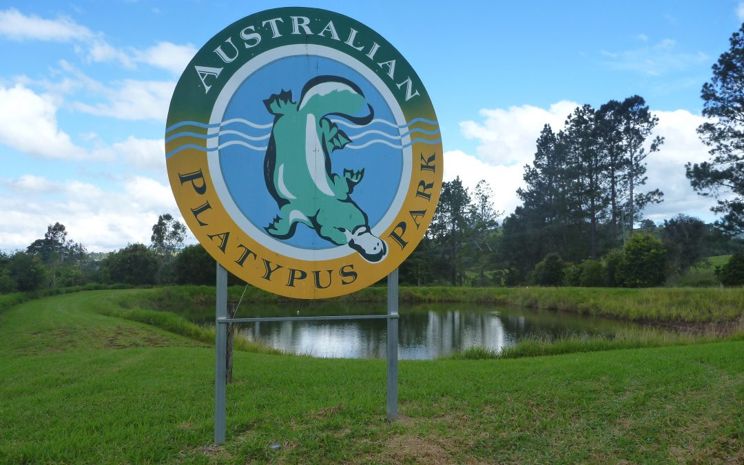Tarzali ..Atherton Tablelands, North Queensland