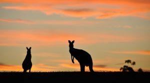 Australian Seasons